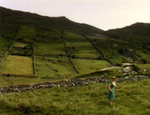 irishcountryside3